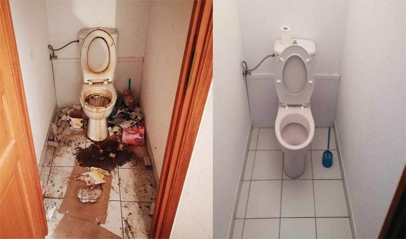 Nettoyage sanitaire - BIRD